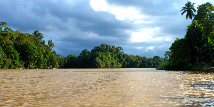 Cruising the Kinabatangan in Borneo